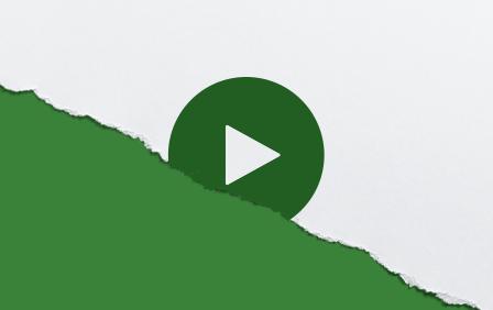 vadvigor-GIF